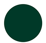 1436 A Runway For The Money - Dark Green Cr�me