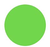 1554 Sometimes A Girls Gotta Glow - Neon Lime Green
