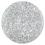 1358 Water Field - Silver Holographic Glitter